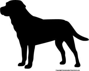 ನಾಯಿ,, Dog